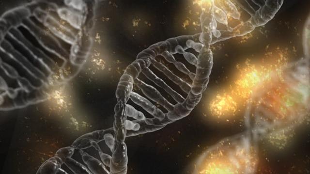 睡眠時間と遺伝子